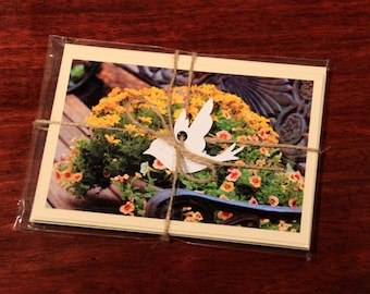 Garden Flowers Photographic Note Card Pack