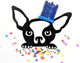 Pet Birthday Hat || Dog Birthday Crown || Animal Birthday Crown || Pet Accessory || Dog Party Hat || Kitty Cat Pig Birthday Hat