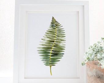 Fern print illustration botanical watercolor art, Fern poster botanical wall art print, Nature art botanical fern prints. Leaf home decor