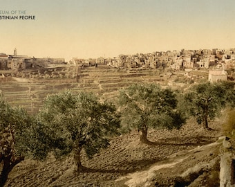 General view of the well of David, Bethlehem, Holy Land