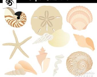 Seashells Digital Clipart-Nautical-Ocean-Beach-Seashell-Starfish-Sand Dollar-Scrapbook Graphics-Digital Elements-Instant Download Clip Art