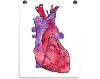 Human Heart / Art Print of Watercolor Painting
