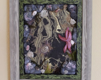 Framed Tidepool - Mixed Media Assemblage