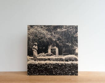 Italian Holiday, 'Timid in the Garden' Limited Edition, Image Transfer on Wood Panel by Patrick Lajoie, photo art block, italy photography