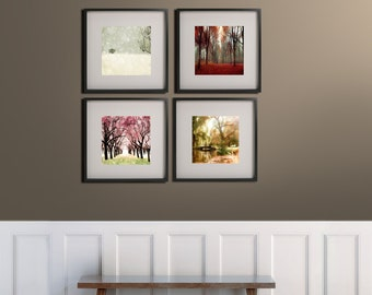 SALE, 4 Seasons Tree Print, Nature Photography, Four Seasons Art Prints, Nature Gift, 4 Seasons Wall Art