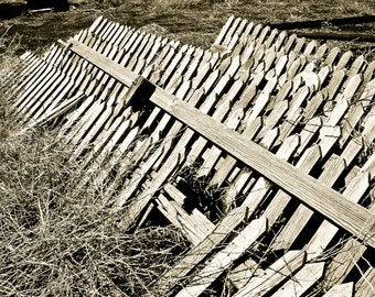 Black and White Photography, rustic picket fence graveyard, picket fence, pickets, wood fence, distressed wood, weathered,  Rustic Wall Art