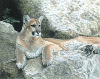 Mountain Lion Art COUGAR HAVEN Original Artwork by Carla Kurt