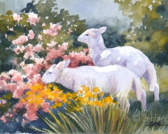 Lamb Print Printed Nursery Wall Art 8x10 Watercolor Baby Animal Wall Art by Janet Zeh Zehland