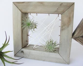 Rustic Reclaimed Wood Cube String Art Air Plant Wall Display, Geometric Air Plant Wall Holder, Air Plant Mount, Floating Square Shelf