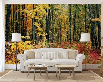 Wall Mural Woods, Autumn Wall Mural, Woods Wall Mural, Wallpaper Autumn, Woods Wall Decal