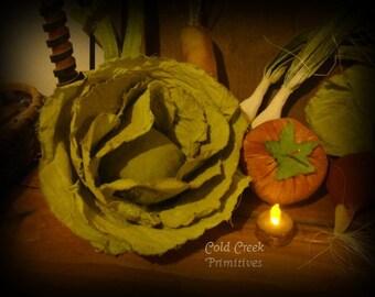 Primitive Cabbage 1 Head