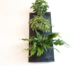 Gift Idea * Vertical Planter * Wall Felt Planter * Indoor Wall Felt Planter * Outdoor Planter * Hanging Planter > Black Marble > Butterflies
