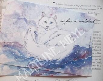 Postcard Snow Cat 1 x