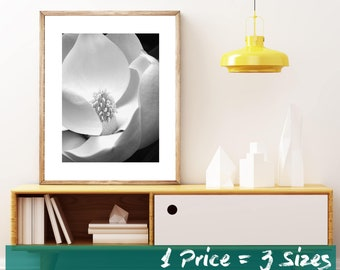 8x10, 11x14, 16x20, Magnolia Print, White Flower Art Print, For the Home or Office