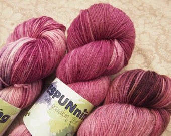 Blueberry Shake set ExF  Merino 19 - hand dyed yarn