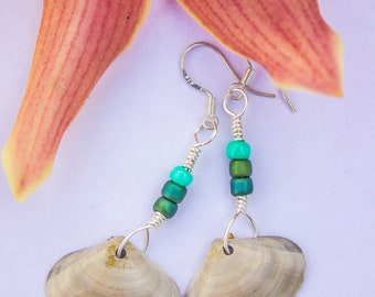 Blue Teal and Gray Shell Earrings