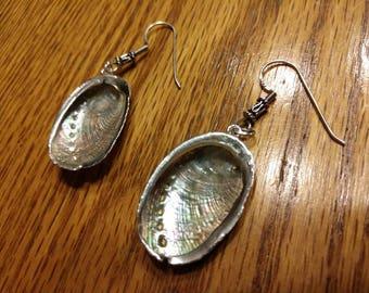 Lovely Abalone Shell Earrings