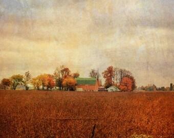 Nature photography, farm photo, country photo, landscape painted, countryside, barn, farm, trees, fall, textured, orange, autumn, Ontario