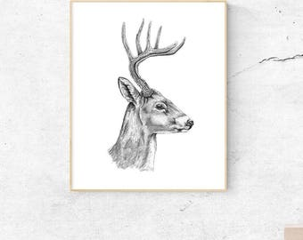 Deer Art, Woodland Deer Art, Deer Print, Deer Art Print, Deer Decor, Deer Wall Art, Deer Poster, Deer Head, Deer Wall Decor, Deer Head Decor