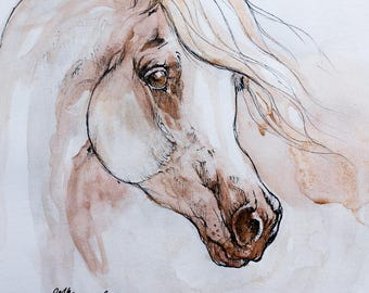 Arabian horse, equine art, equestrian, cheval, horse portrait, original pen and watercolors drawing