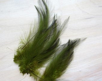 27 Green Rooster Hackle Feather, Vintage Feather, Wedding Feathers, Fly Fishing Craft, Rooster Tail, Millinery Feather, Hat Feather