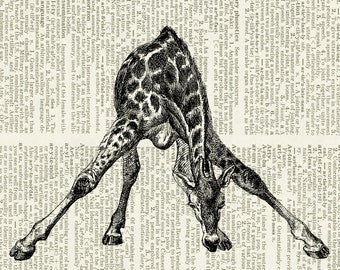 giraffe print on camillapihl.no blog