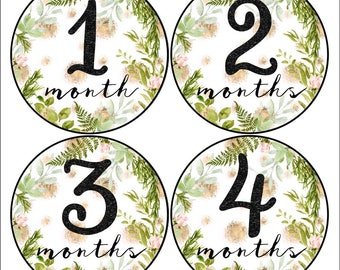 Baby Girl Month Stickers Floral Stickers Baby Stickers Girl Milestone Keepsake stickers Greenery and Gold Baby Shower Gift