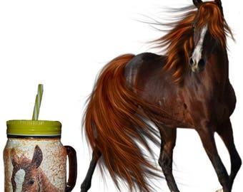 Horse mason jar to drink with drinking straw kitchen decor  homedecor decoupage  mug gift for boy,girl,friend,him,her child birthday gift