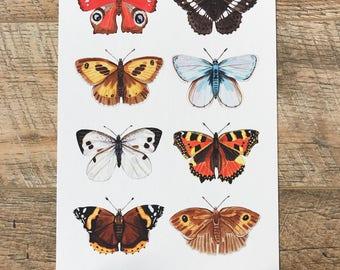 British Butterflies A4 Print