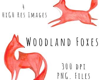 Fox Watercolor Clipart High Quality 300dpi Watercolour Digital Instant Download DIY Graphic Illustration Art PNG File Design