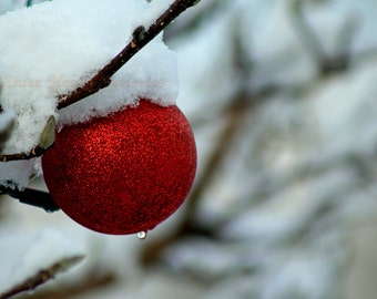 Christmas Ornament on a Snowy Day