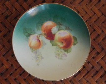 Austrian Hand Painted Small Plate!