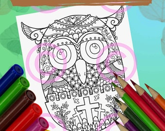 Whimsical Baby Owl In The Egg Christian Easter Zendoodle Tangles Coloring Page For Adult And