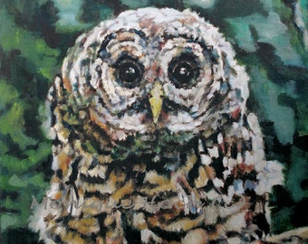 "Fine Art Print "" Barred Owllet"" of original oil painting by Monique Hoch"