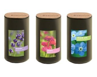 Reclaimed  Wine Bottle Garden – Grow Bottle Demi – Indoor Garden – Flowers – Gift – Christmas - Mom - Lavender - Forget Me Not - Zinnias