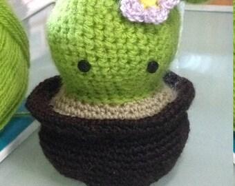 Cactus Amigurimi