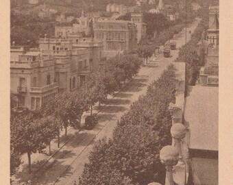 Barcelona, Spain, Avenue Tibidabo - Vintage Postcard - Antique Postcard - B&W - Photo Postcard - Unused ~ No:57
