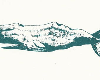 Sperm Whale Screen Print (teal)