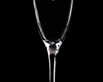 Tinkerbell Hand Etched Flute Glass Champagne Glass.39
