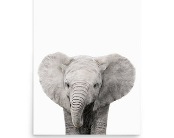 Nursery Decor, Baby Elephant Print, Baby Animal Print, Nursery animal print, Animal Portraits, Nursery Wall Art, Photography, Digital Print