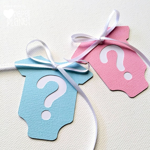 Gender Reveal Baby Shower Gift Tags Pink And Blue