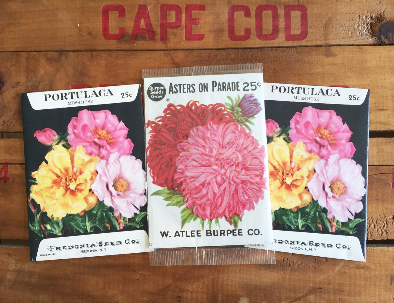 Vintage Flower Seed Packets / Portulaca Moss Rose Fredonia
