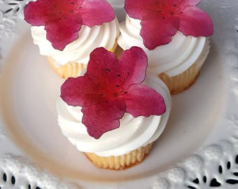 Edible Wafer Paper Flat Fuchsia Azalea Flower Cake/Cupcake/Cookie Toppers Set of 12