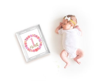 INSTANT DOWNLOAD Baby Age Milestones, Month-by-Month Printables, Pink Roses & Gold
