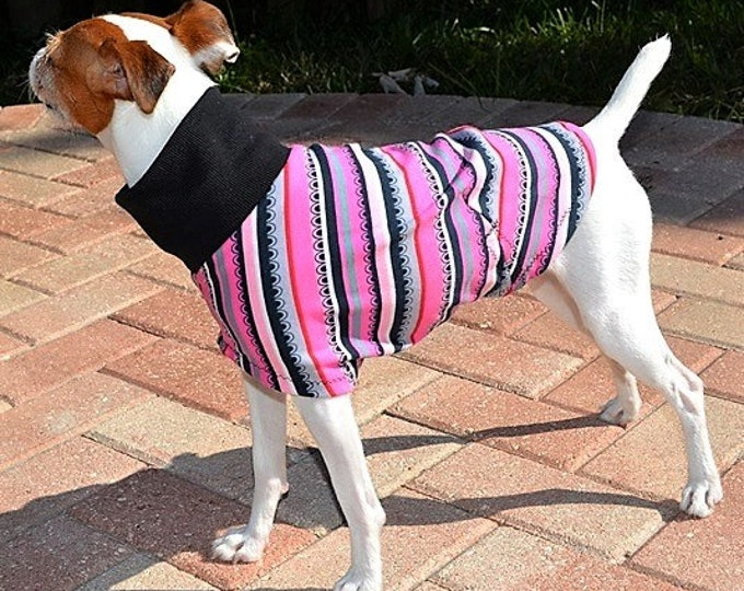"Italian Greyhound Clothing. ""Pink Scallop Tee"" - Italian Greyhound Sizes."