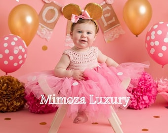 Minnie mouse birthday dress, pink minnie mouse outfit, 1st birthday tutu dress, minnie mouse themed party, minnie mouse ears, minnie dress