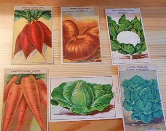 6 SEED PACKET Labels Veggie Cabbage Romaine Lettuce Onion Radish Carrots 1920s French Art Vibrant Litho Color Paper Cards Collage Journal v7