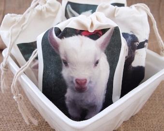 Goat Milk Bath Salts Made With Organic Hand-Milked Goat's Milk for A Moisturizing Bath