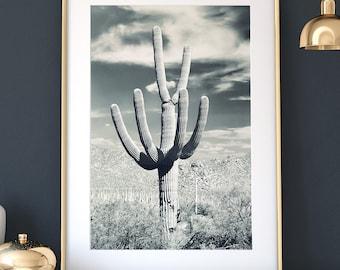 Cactus Print, Blue wall art, PRINTABLE art, Southwestern style, Southwestern art, Minimalist, Nature print, Cactus wall art, Cactus poster