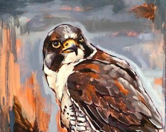 Peregrine Falcon in Oil